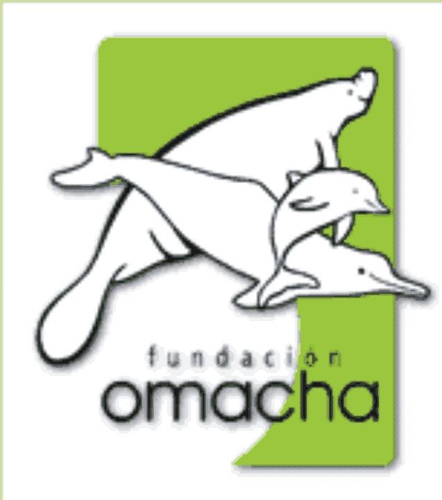 Fun_omacha