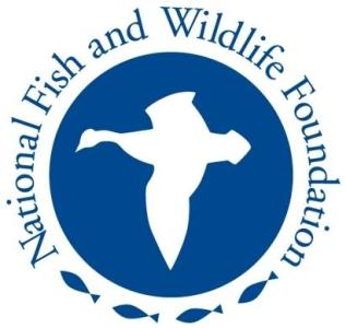 nationalfish