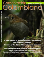 Nº 13 A new species of Antpitta from the Colibrí del Sol Bird Reserve, Colombia.