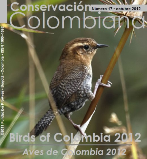 Nº 16 Study and conservation of the birds of San andrés Island