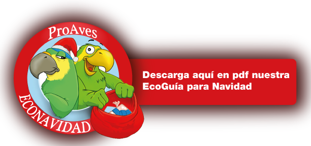 descargar-manual-png