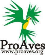 Mediano LOGO PROAVES- final 2008