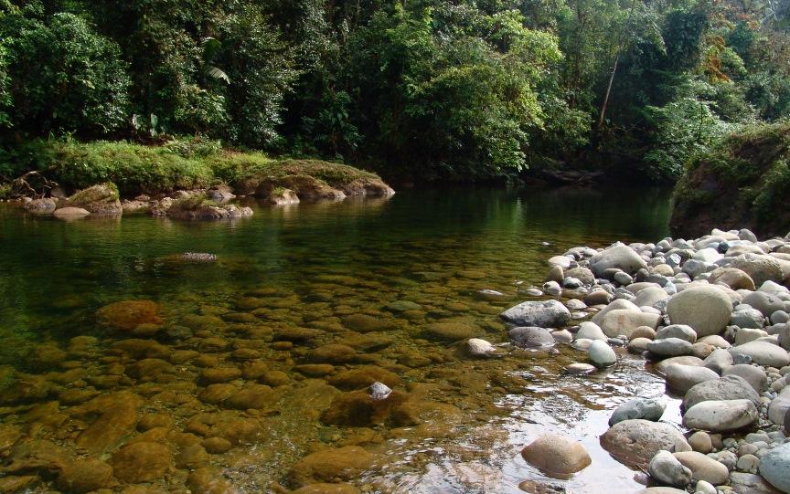 Recuperación de parte del río Ñambí luego de derrame de crudo