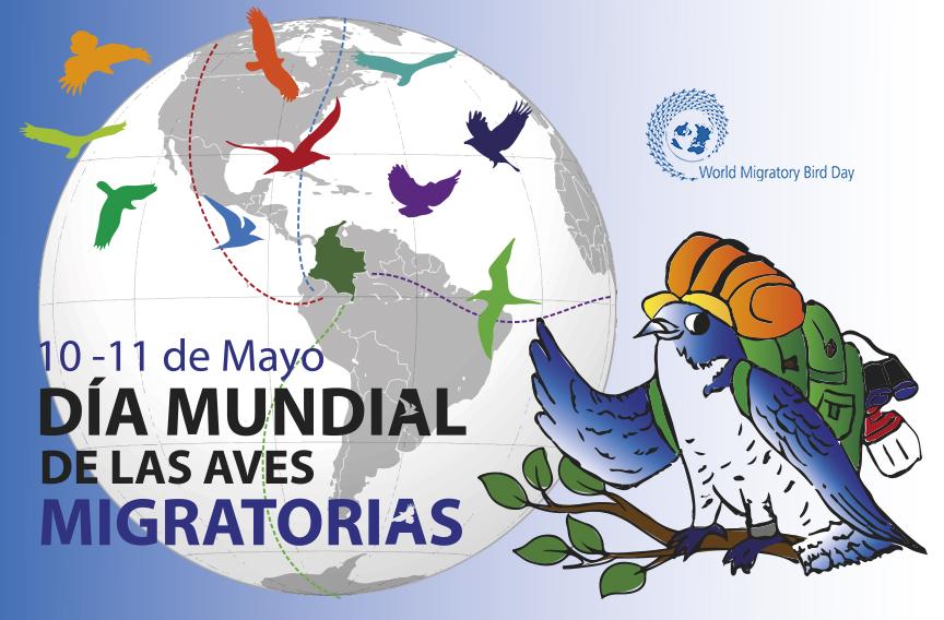 Celebremos el Día Mundial de las Aves Migratorias