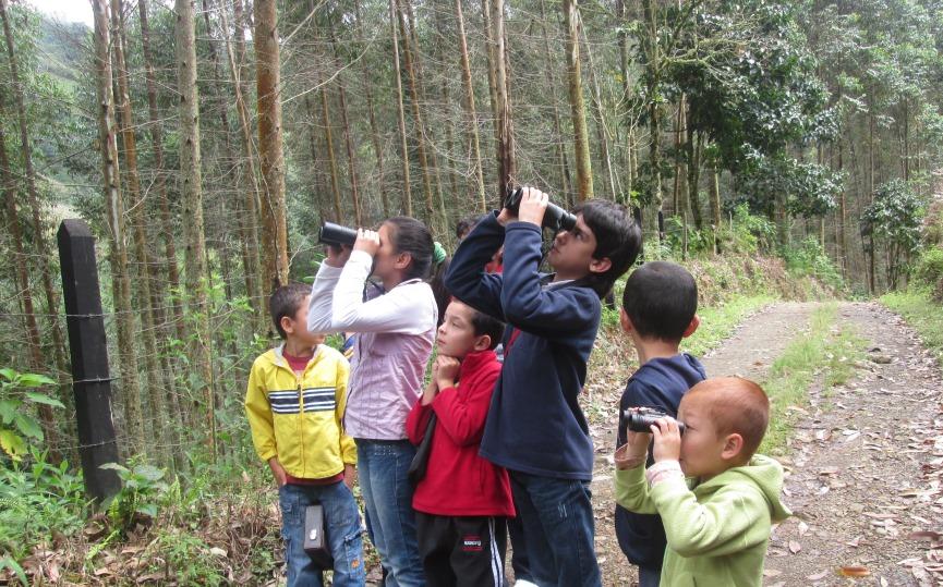 Reservas de ProAves, destino seguro para las aves migratorias.
