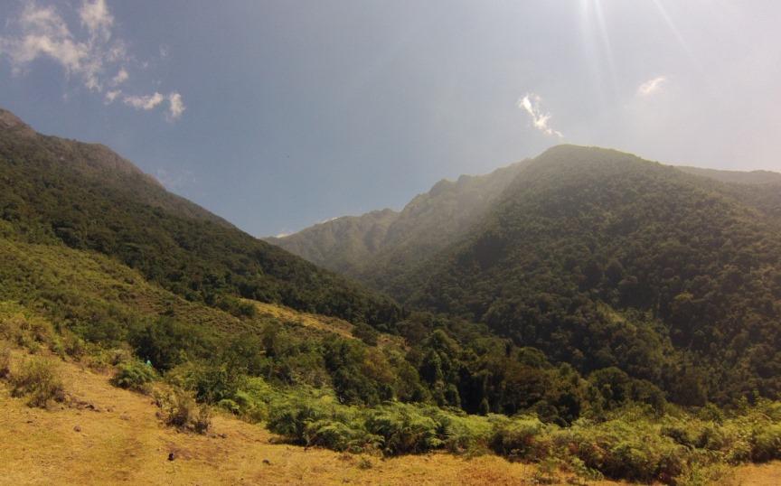 Reserva ProAves Chamicero del Perijá protege nueva especie de Tapaculo