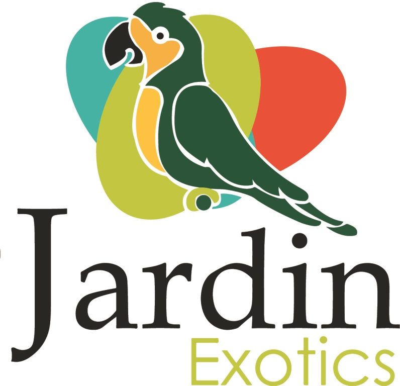 Jardín Exotics low