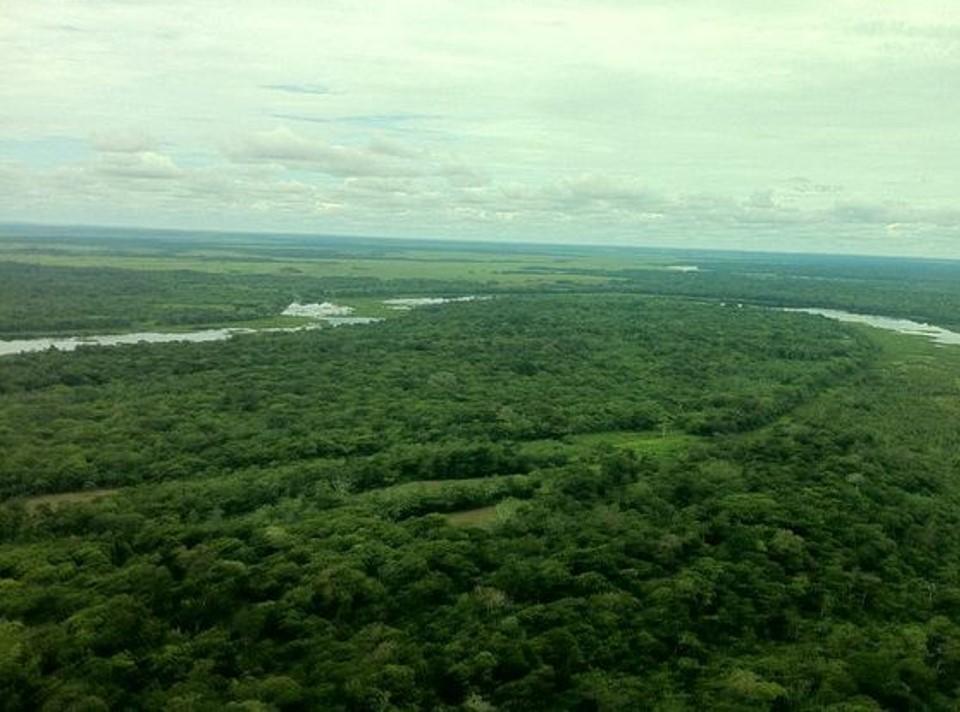 El Jaguar Reserve