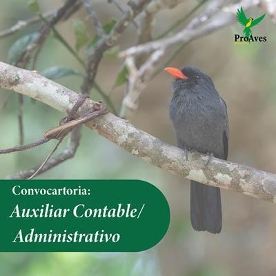 Convocatoria para Auxiliar Contable / Administrativo
