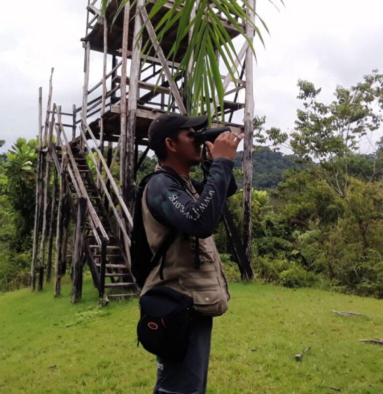 Gran conteo de aves en las Reservas ProAves