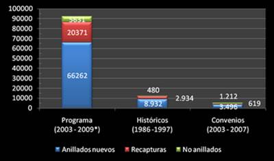 Esfuerzo de muestreo de capturas 2003-2009 y número de individuos de especies por categorías registrados por años.